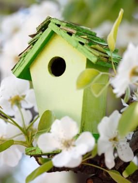 Bienes raíces: Esta primavera será diferente