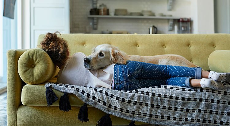 Why Pet-Friendly Homes Are in High Demand | Keeping Current Matters