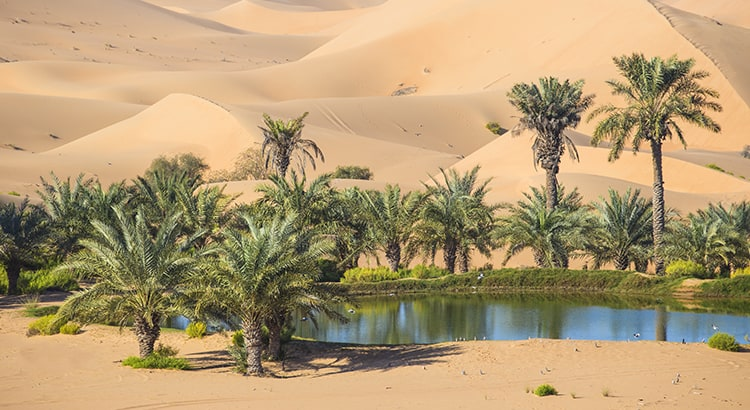 Your House Could Be the Oasis in an Inventory Desert | Keeping Current Matters